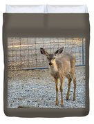 Deer Fawn - 1 Duvet Cover