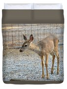Deer Fawn - 2 Duvet Cover