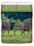 Deer In A Hay Field Duvet Cover