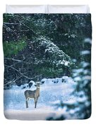 Deer In A Snowy Glade Duvet Cover