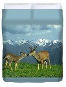Ma-181-deer In Love  Duvet Cover