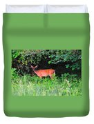 Deer In Overhang Of Trees Duvet Cover