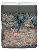 Deer In Woods Duvet Cover