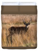 Deers Attention Duvet Cover