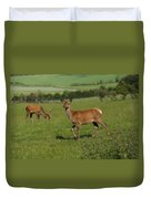 Deers On A Hill Pasture. Duvet Cover