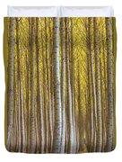 Dense Forest Of Poplar Trees In Boardman Oregon During Fall Duvet Cover