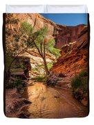 Desert Canyon Paradise - Coyote Gulch - Utah Duvet Cover