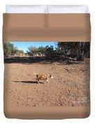 Desert Dog Duvet Cover