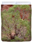 Desert Elements 6 Duvet Cover
