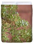 Desert Elements 7 Duvet Cover