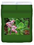 Desert House Blooming Succulent Duvet Cover