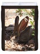 Desert Jackrabbit Duvet Cover