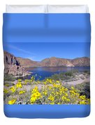 Desert Lake Duvet Cover