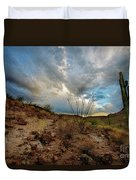 Desert Landscape With Clouds Duvet Cover