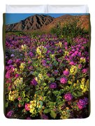 Desert Sand Verbena And Brown-eyed Primrose Below The Coyote Mountains California Duvet Cover