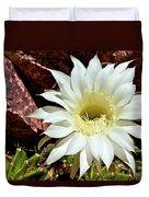 Desert Star Duvet Cover