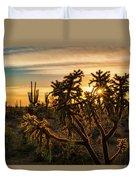 Desert Sunshine Shining Through  Duvet Cover