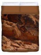 Desert Varnish Petroglyphs Valley Of Fire Duvet Cover