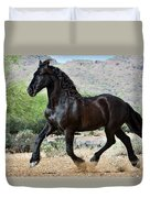 Desert Wind Duvet Cover