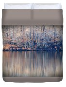 Desolate Splendor Duvet Cover