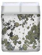 Detail Of Lichen On A White Rock Lake Duvet Cover