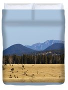 Devil's Head Fire Tower In The Pike National Forest Duvet Cover