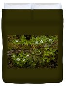 Dew Dropped Spring Bunchberries Duvet Cover
