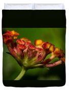 Dew Drops In A Desert Garden Duvet Cover