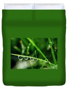 Dew Drops On Blade Of Grass Duvet Cover