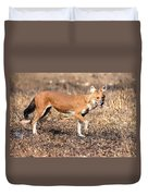 Dhole In The Wild Duvet Cover