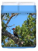 Ding Darling - Pileated Woodpecker Resting Duvet Cover