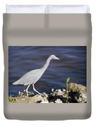 Ding Darling Wildlife Refuge Vii Duvet Cover