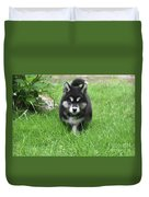 Dinstinctive Black And White Markings On An Alusky Pup Duvet Cover