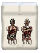 Dissected Torsos And Brains Duvet Cover