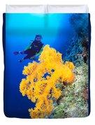 Diving, Australia Duvet Cover by Dave Fleetham - Printscapes