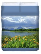 Dm9235 Mt. Moran From Oxbow Bend Duvet Cover