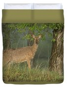 Doe On A Foggy Morning In Wyoming Duvet Cover