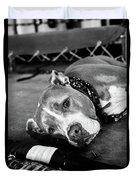 Dog At The Ring Duvet Cover