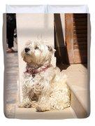 Dog Begging Duvet Cover