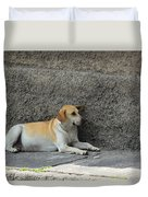 Dog Next To A Wall Duvet Cover