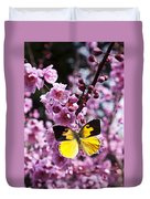 Dogface Butterfly In Plum Tree Duvet Cover