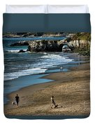 Dogs Beach Santa Cruz California Nature  Duvet Cover