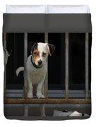 Dogs Family Duvet Cover