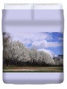 Bradford Pear Trees On Display Duvet Cover