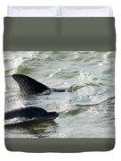 Dolpins In Estero Bay Duvet Cover