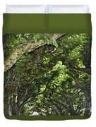 Dome Of Trees Duvet Cover