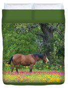 Domestic Horse In Field Of Wildflowers Duvet Cover