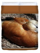 Domestic Mandarin Duck Close Up Duvet Cover