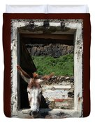 Donkey At The Window Duvet Cover