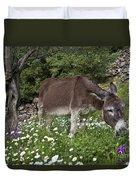 Donkey Grazing In Greece Duvet Cover